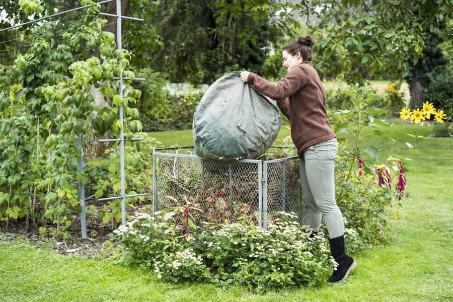 Spielende Kinder im Garten: Tipps für eine friedliche